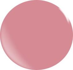Farbgel N141/ 22 ml