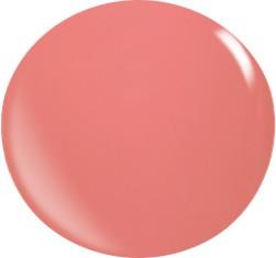Farbgel N025/22 ml