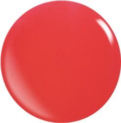 Farbgel N014/22ml