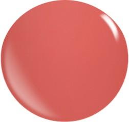 Farbgel N051/ 22 ml
