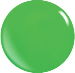 Farbgel N072/ 22 ml