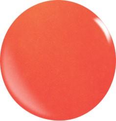 Color Acryl Powder N049/56 gr.