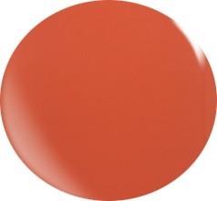Farbgel N031/ 22 ml