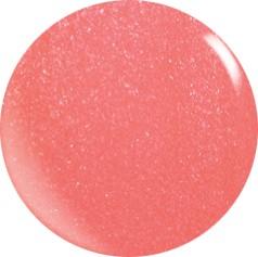 Farbgel N065/ 22 ml